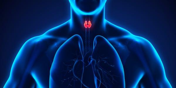 Anesthesie bij endocriene stoornissen
